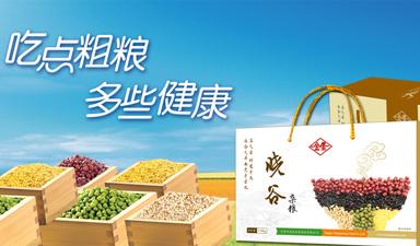 天津市益民金星食品有限公司