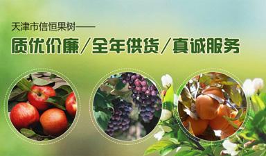 天津市信恒苗木种植专业合作社